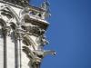 Rzygacze na katedrze Natre Dame