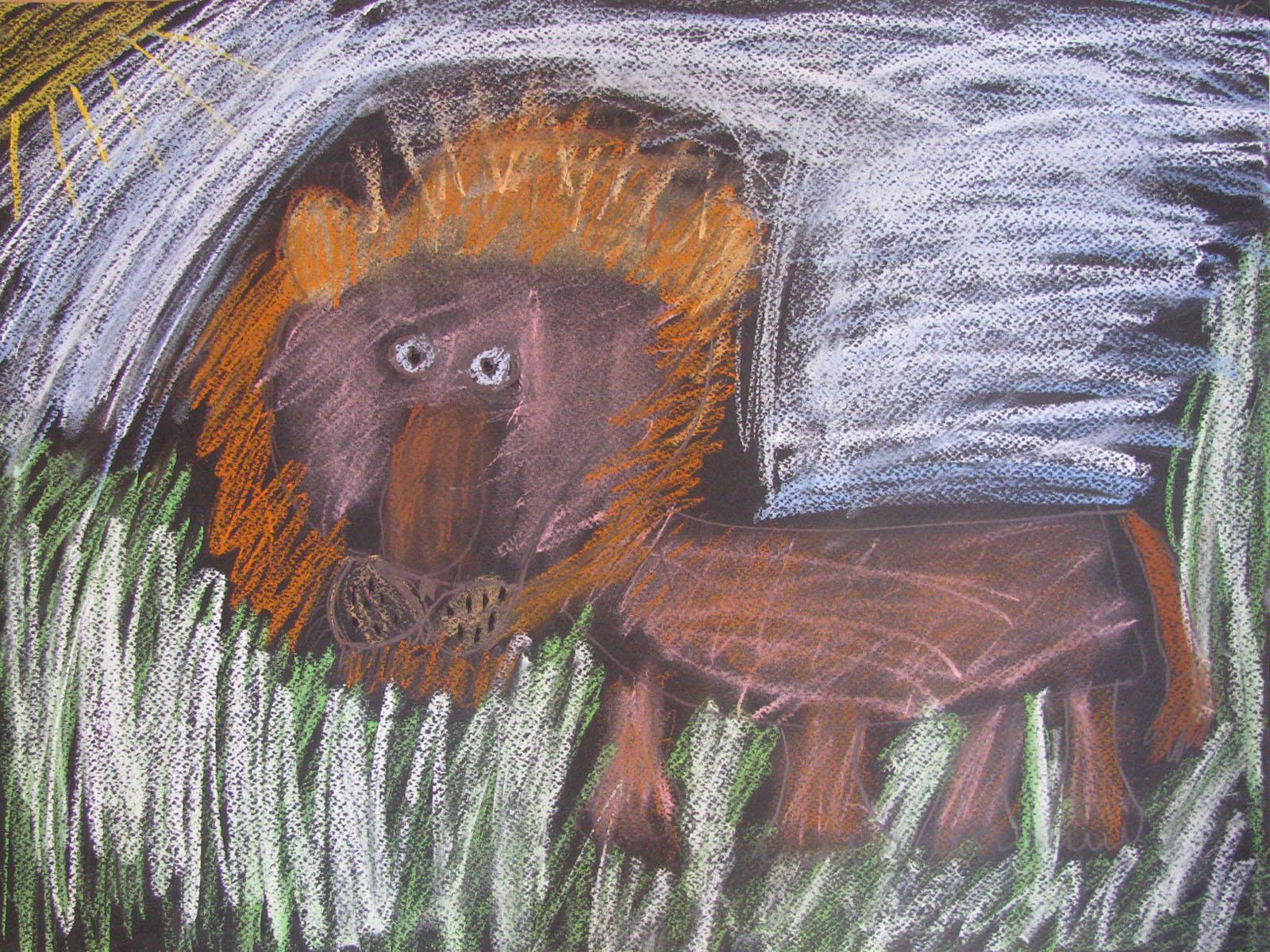 natalia kamola