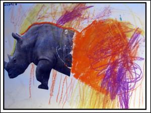 kornel sz nosorozec