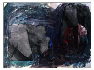 kornel sz slonie